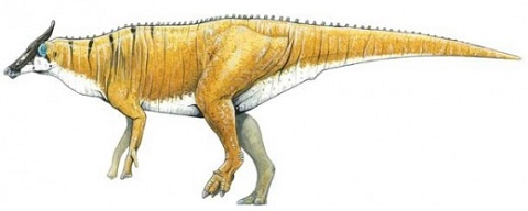 Picture of the duck-billed Augustynolophus morissi